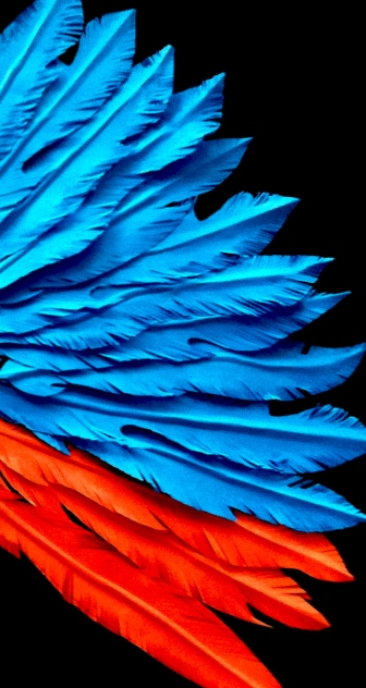 Paper feather detail